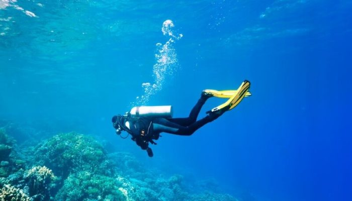 Diving in the clear sea
